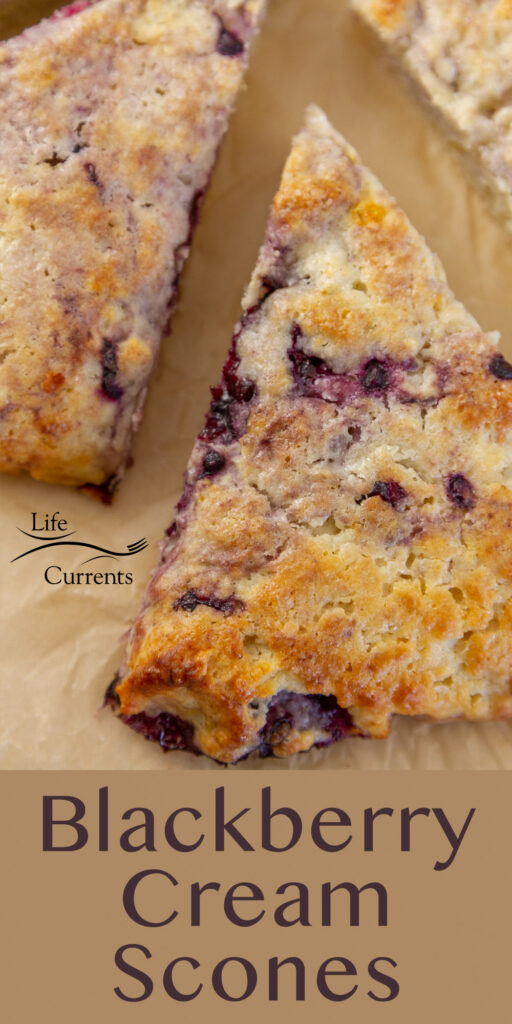 a Blackberry Cream scone on parchment paper, title on bottom of image.