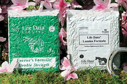 Supplements for Laminitis