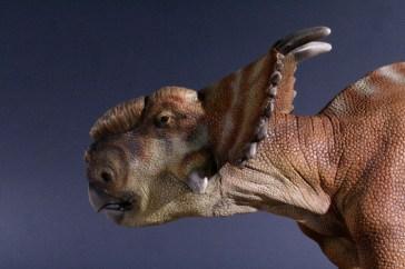 Pachyrhinosaurus canadensis lifedinosaur alfonso jaraiz