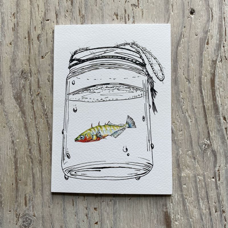 Stickleback A5 Notebook