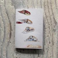 Cuttlefish Pocket Notebook
