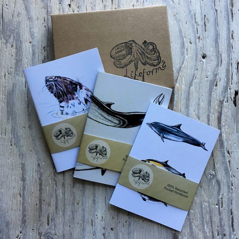 Sea Mammals Pocket Notebook Set