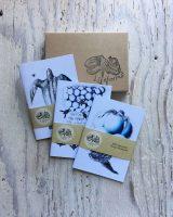Leatherback Turtles Pocket Notebook Gift set