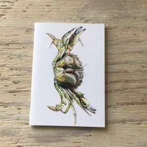 shore crab pocket notebook