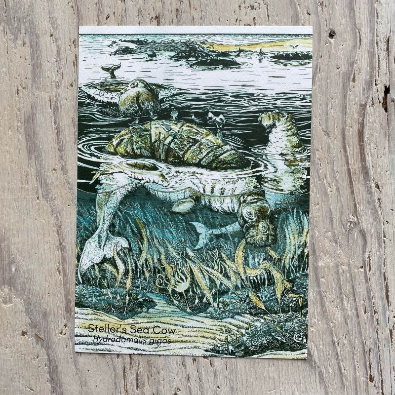Stellers Sea Cow Art Print
