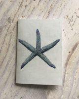 spiny starfish pocket notebook