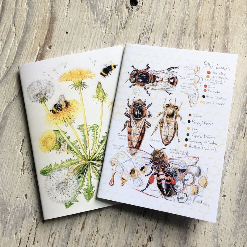 Bees Pocket Notebook set