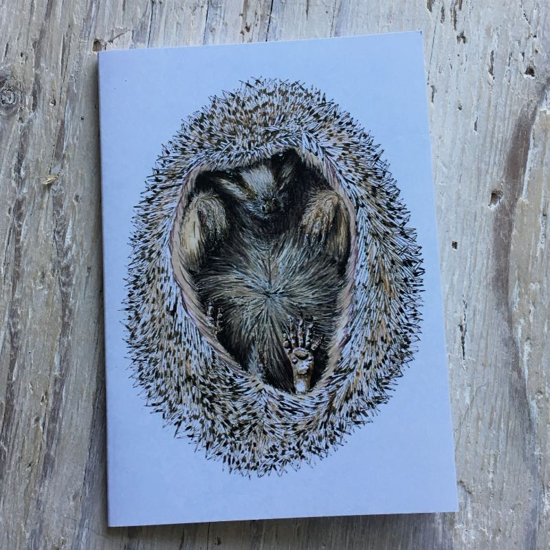 Hedgehog Pocket Notebook