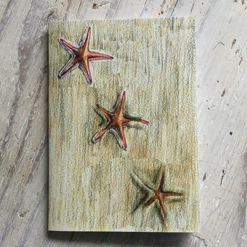 Sand Star Pocket Notebook