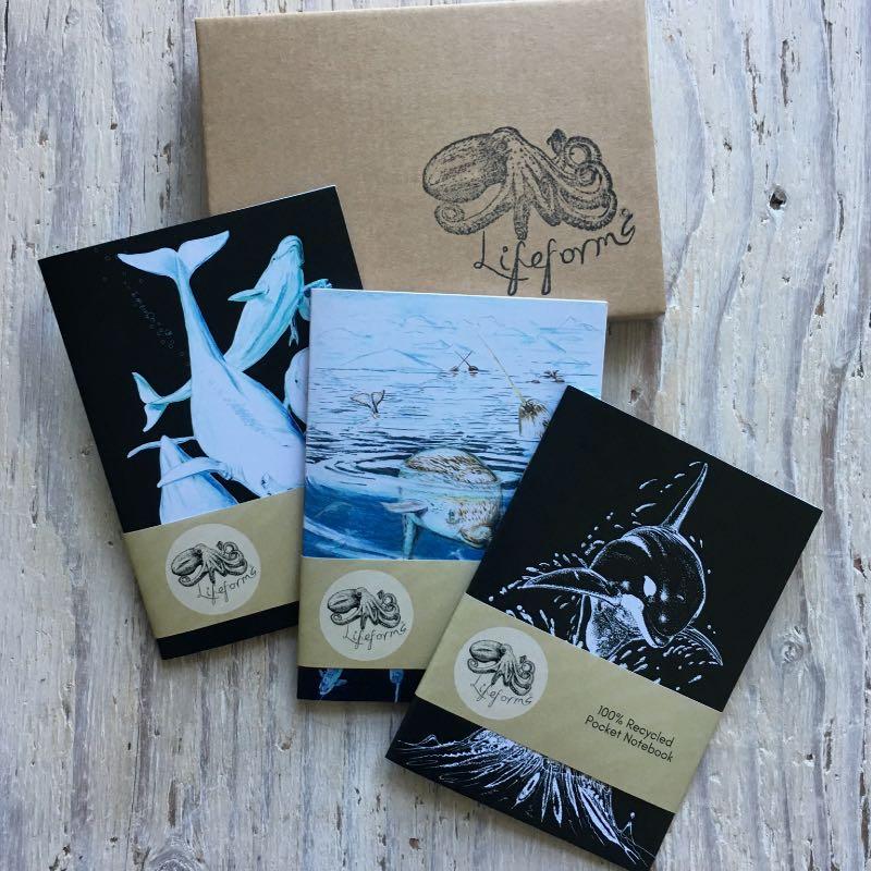 Whales Pocket Notebook Set