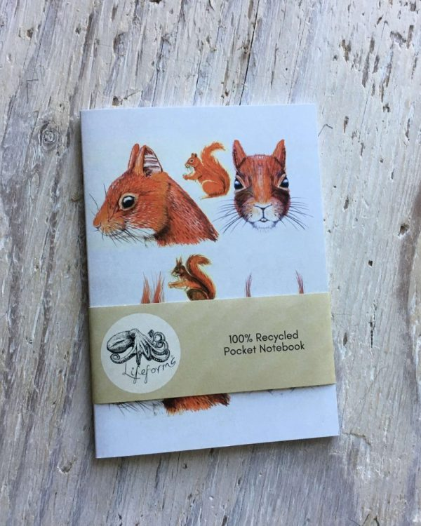 Red Squirrel Face Pocket Notebook