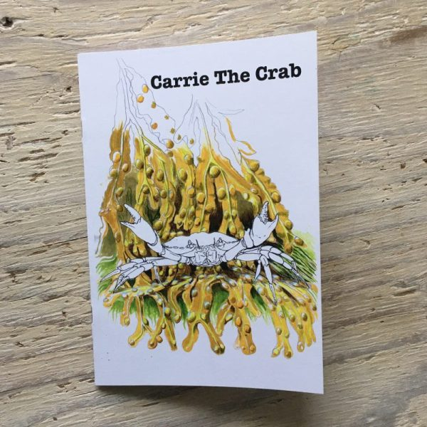 shore crab story book to colour