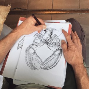 Sketching a lobster
