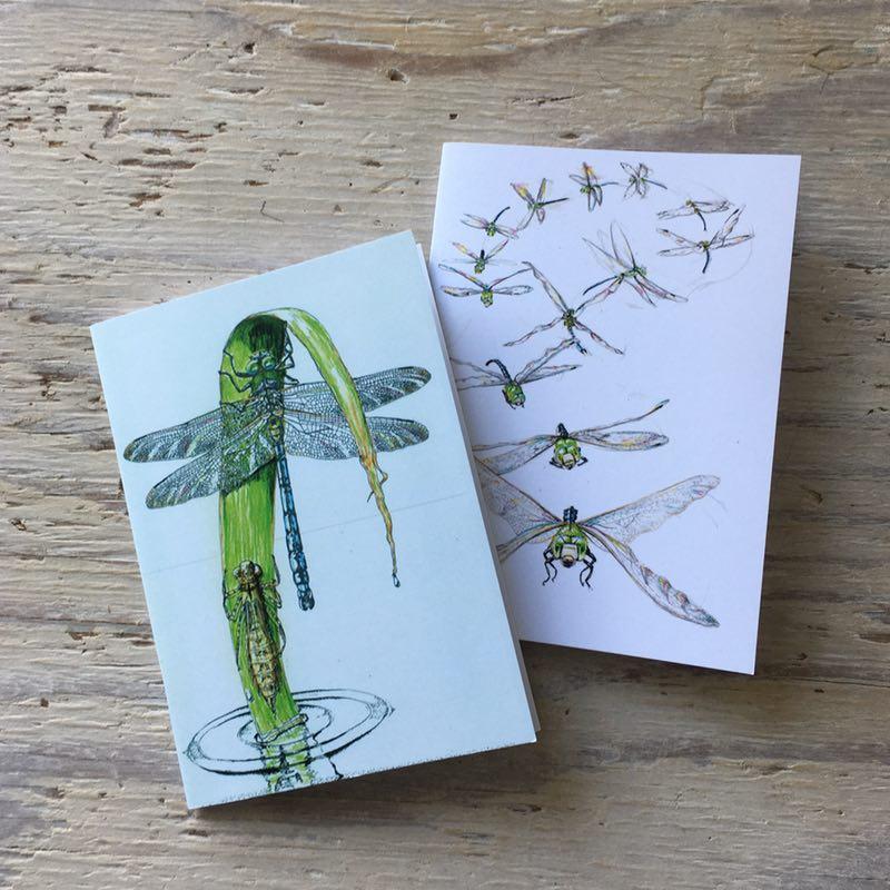 dragonfly pocket notebook set