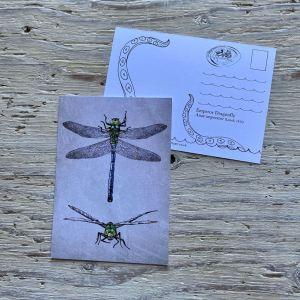 Emperor Dragonfly Postcard