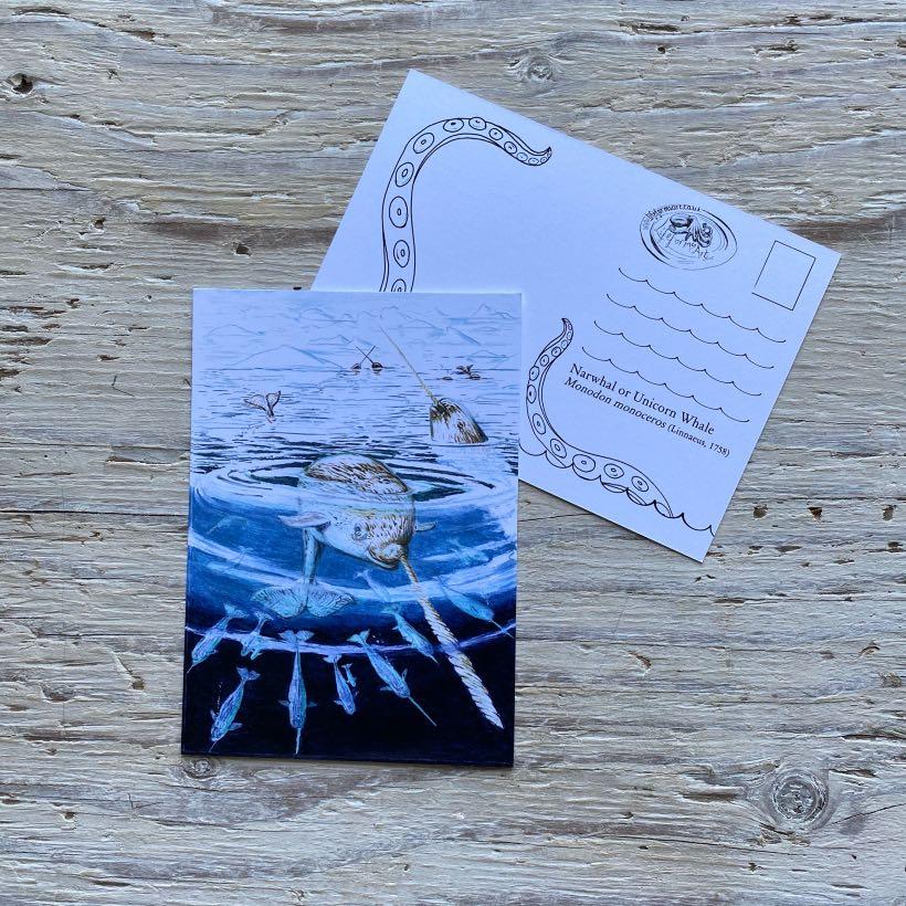 narwhal postcard