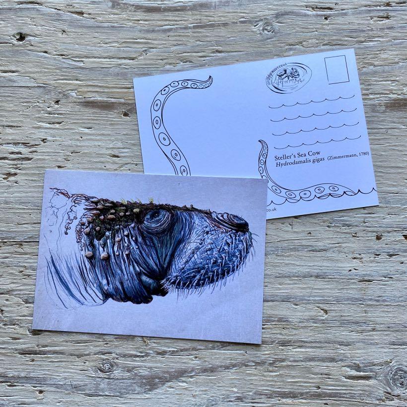 Steller's sea cow postcard