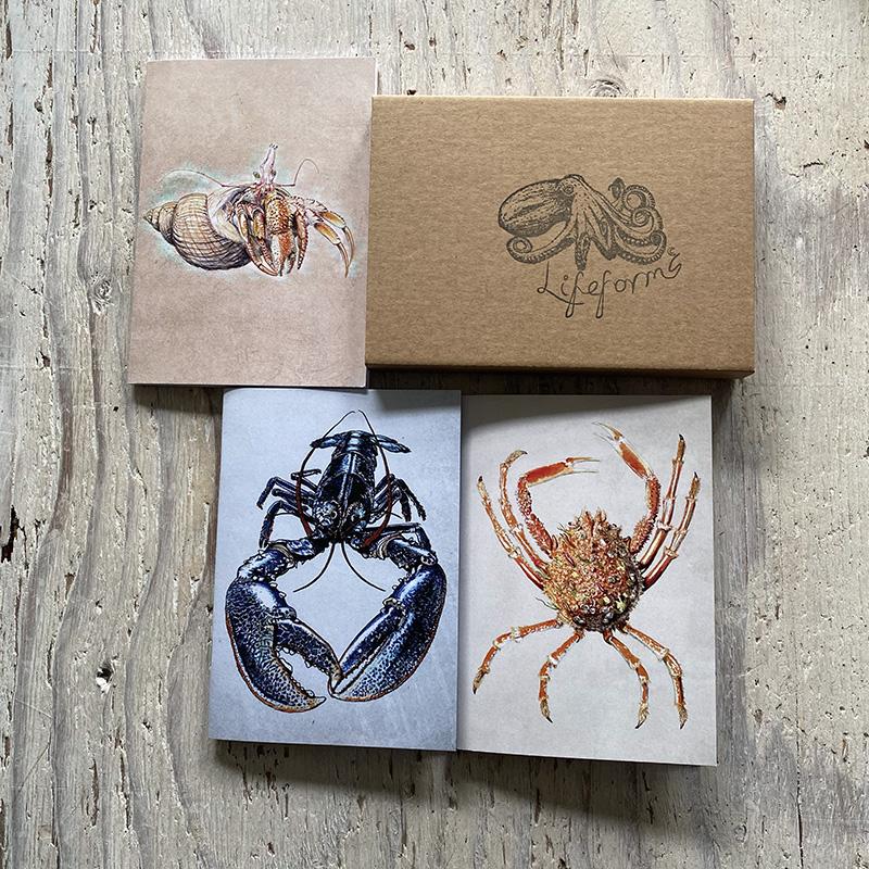 Crustaceans pocket notebook gift set
