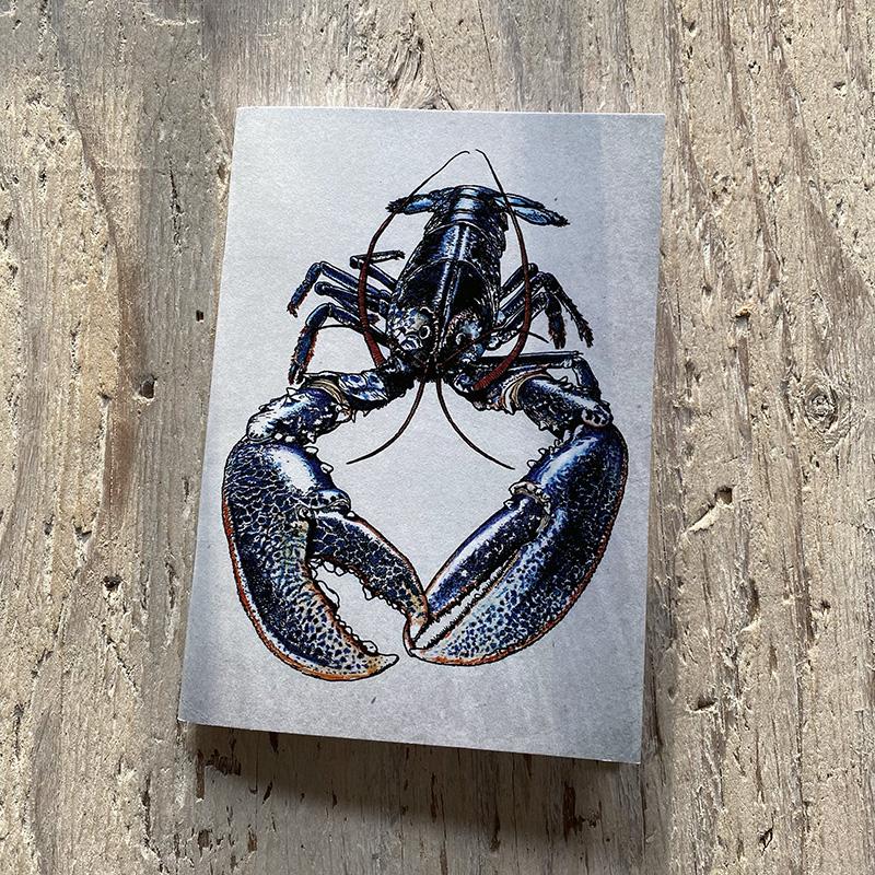 Lobster Pocket Notebook