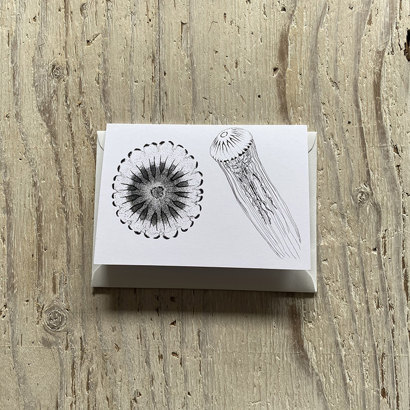 Compass jellyfish greetings card