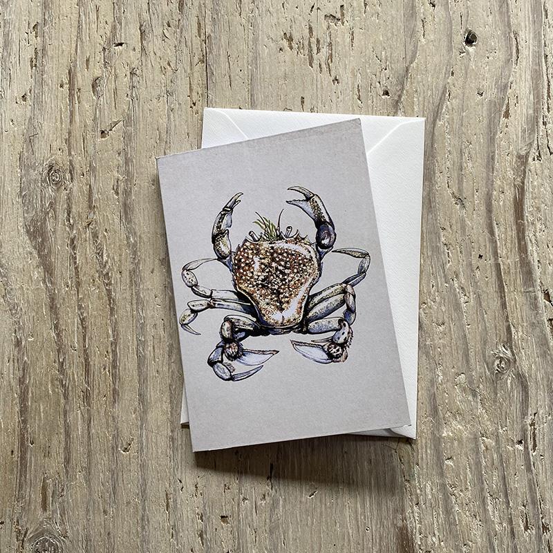 pennants swimming crab greetings card