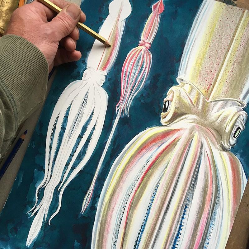 Giant squid in progress