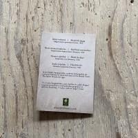 Seahorse & Pipefish Greetings Card