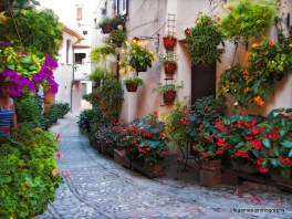 pictures-of-ITALY (106)