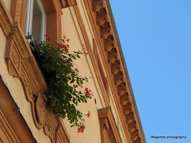pictures-of-ITALY (122)