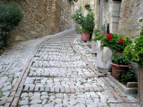 pictures-of-ITALY (142)