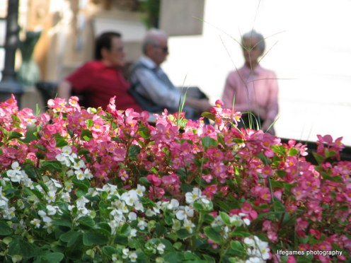 pictures-of-ITALY (32)
