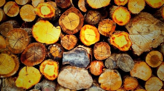"""薪棚の位置は、薪ストーブ生活の""""楽しさ""""を大きく変える"""