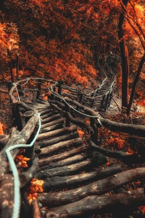 Тринадцатый Ангел, дорога, лестница, в парке Шевченко