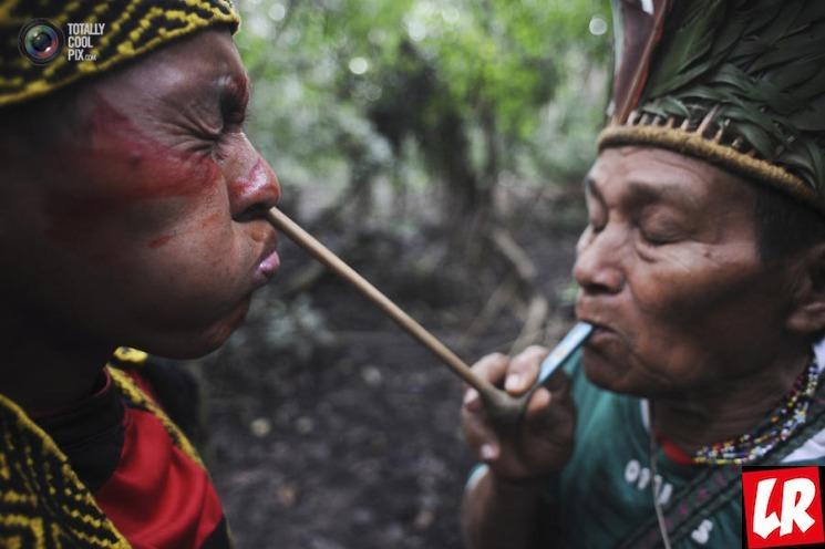 фишки дня - 19 апреля, День индейцев в Бразилии