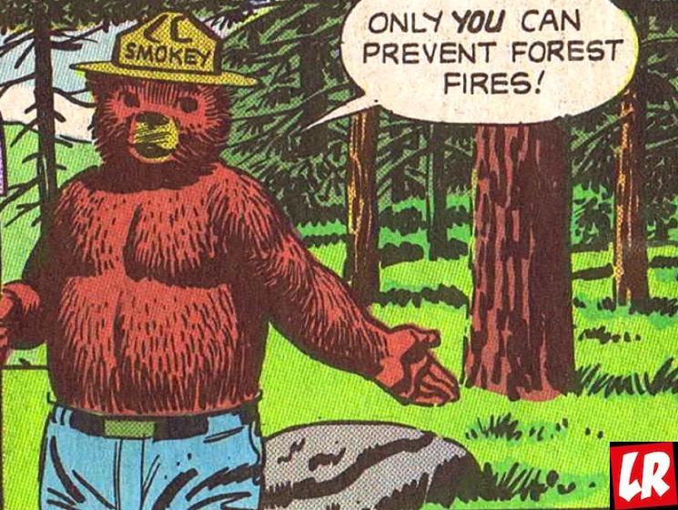 фишки дня - 9 августа, день медведя Смоки, медведь Смоки