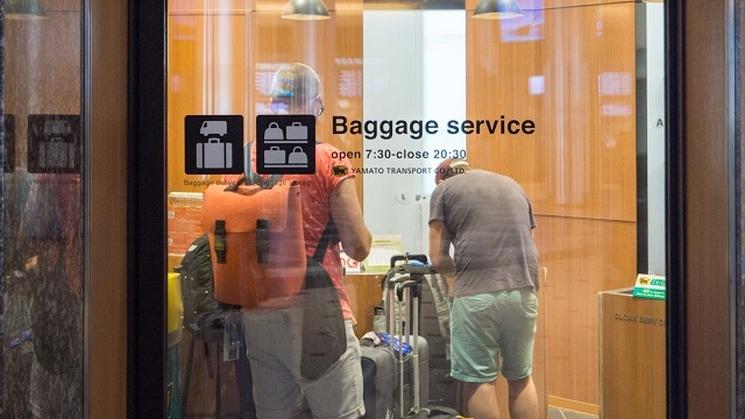 доставка путешественниками, стартап