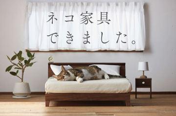фишки дня, день кошки Япония