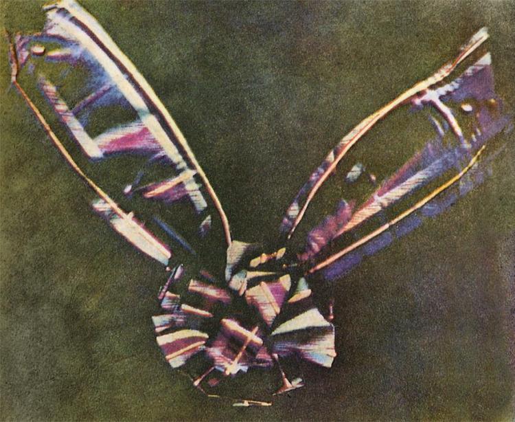 Ленточка из шотландки, Первые цветные фото в истории, Максвелл