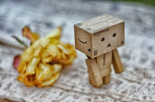 The Adventures of little Danbo