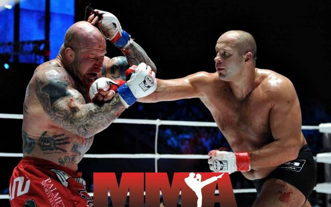 MMA – najkompletnija borilačka veština današnjice