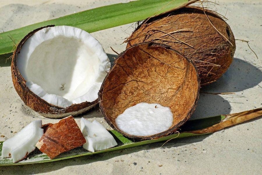 blagodeti kokosovog ulja