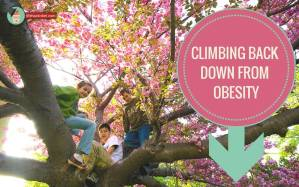 Climbing-back-down-from-obesity-http://lifehackrdiet.com/