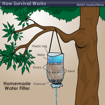 Water Filter Going Camping
