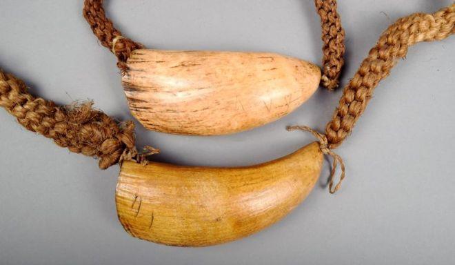 Apie Fidžį - kašalotų dantys