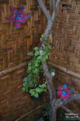 Plastic flowers inside