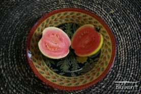 Ready guava fruit