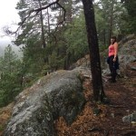 Vilse i skogen