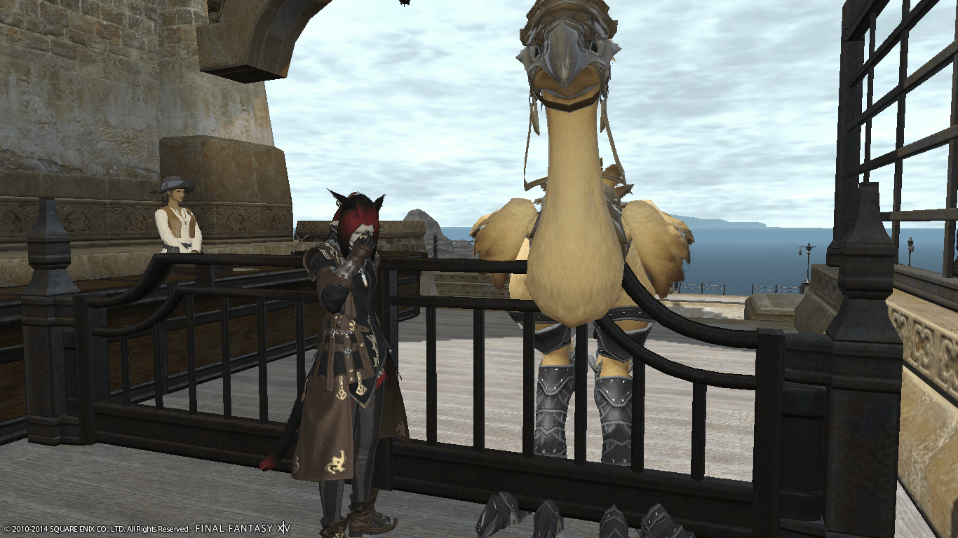 Ayela's chocobo trapped in customs.
