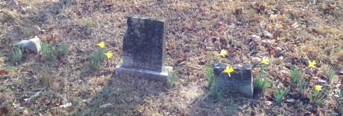 cemetery ball camp baptist11