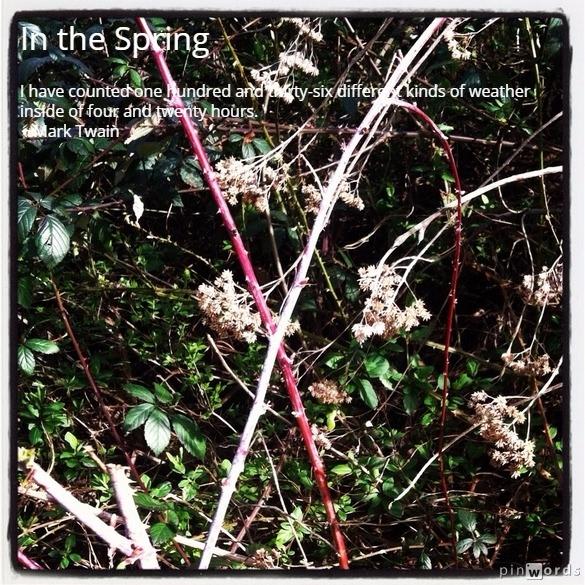 springtime 6